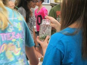 Radioactive Fairy Jars YA (2)